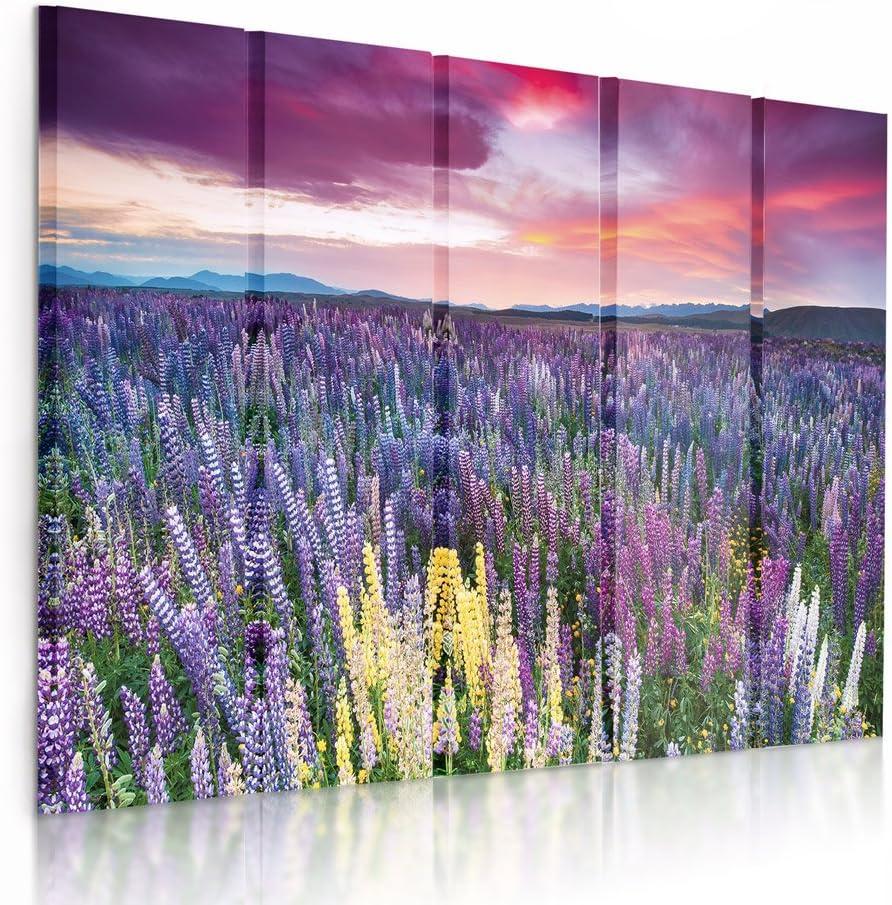 Feeby Frames, Cuadro en Lienzo - 5 Partes - Cuadro impresión, Cuadro decoración, Canvas (Prado con Las Flores,Violeta, Rosado) 150x100 cm, Tipo C