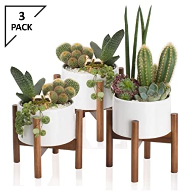 3 Pack Mid Century Modern Succulent Planter Tabletop, 5 Inch Pot with Wood Stand and Hidden Saucer, Round White Ceramic Planters, Shelf Decor Pots, Cactus and Plant Container with Drainage, Indoor