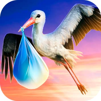 Image result for stork