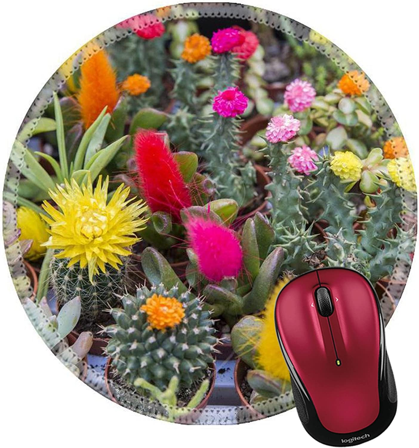 Liili Round Mouse Pad Natural Rubber Mousepad Image ID 32372175 Small Flowered Cactus of Many Kinds