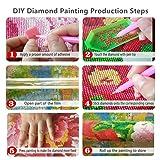 5D Full Drill Diamond Painting Kit,DIY Diamond