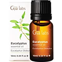 Gya Labs Eucalyptus Essential Oil for Sinus Relief and Congestion Relief - Topical for Headaches, Nausea Relief and…