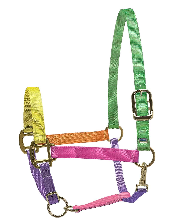 Perri's Nylon Super Halter, Multi Neon, Pony