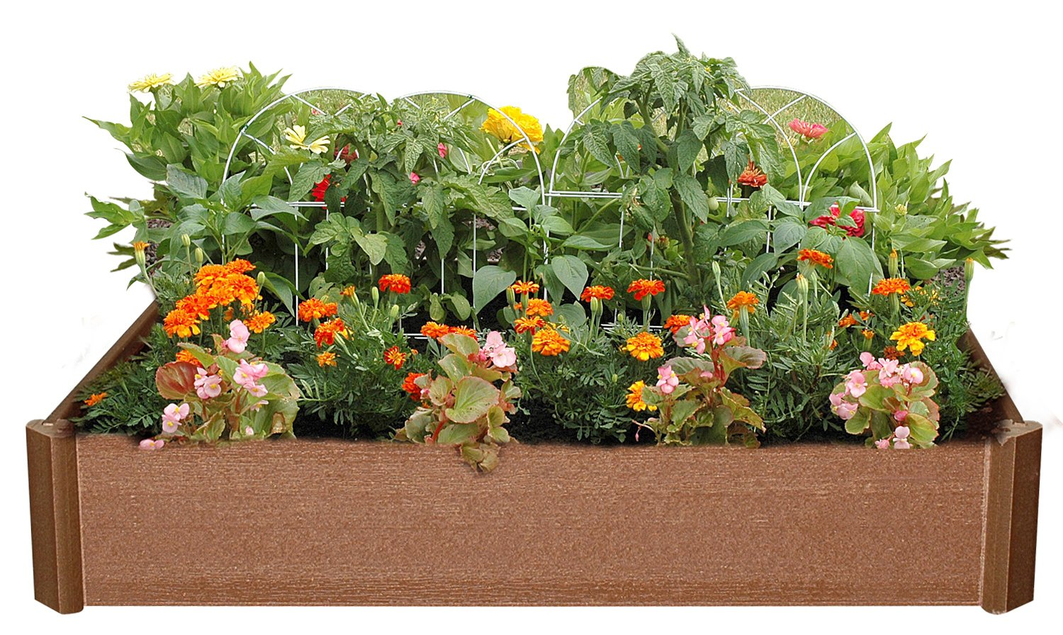 amazoncom greenland gardener 6 inch raised bed garden kit patio lawn garden