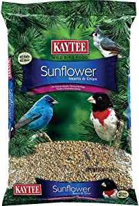 Kaytee Wild Bird Sunflower Seed 3 Lbs.