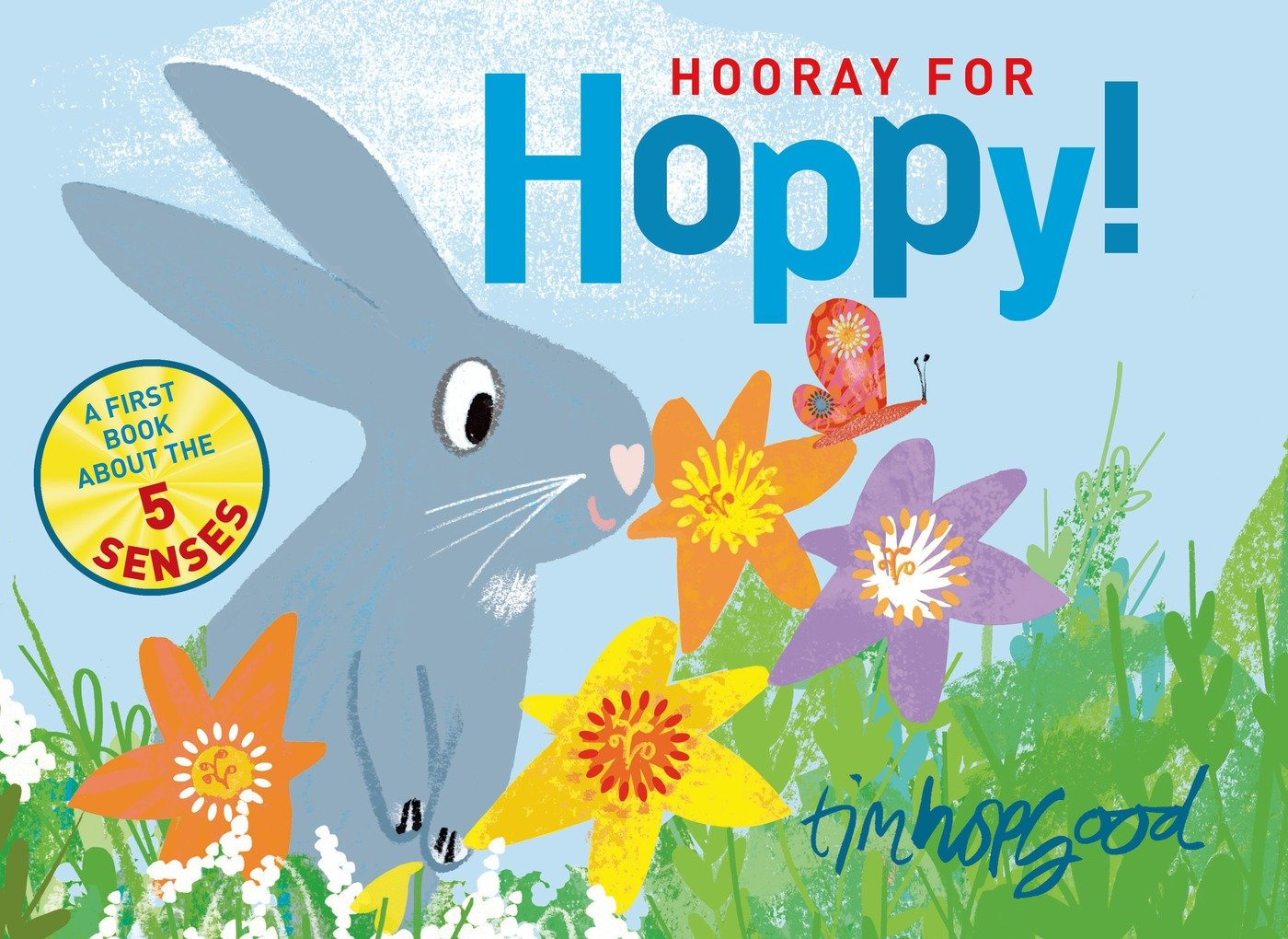Amazon.com: Hooray for Hoppy!: A First Book about the Five Senses (9780374301293): Tim Hopgood: Books