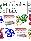 Molecules of Life with a Chemistry Bootcamp (English Edition)