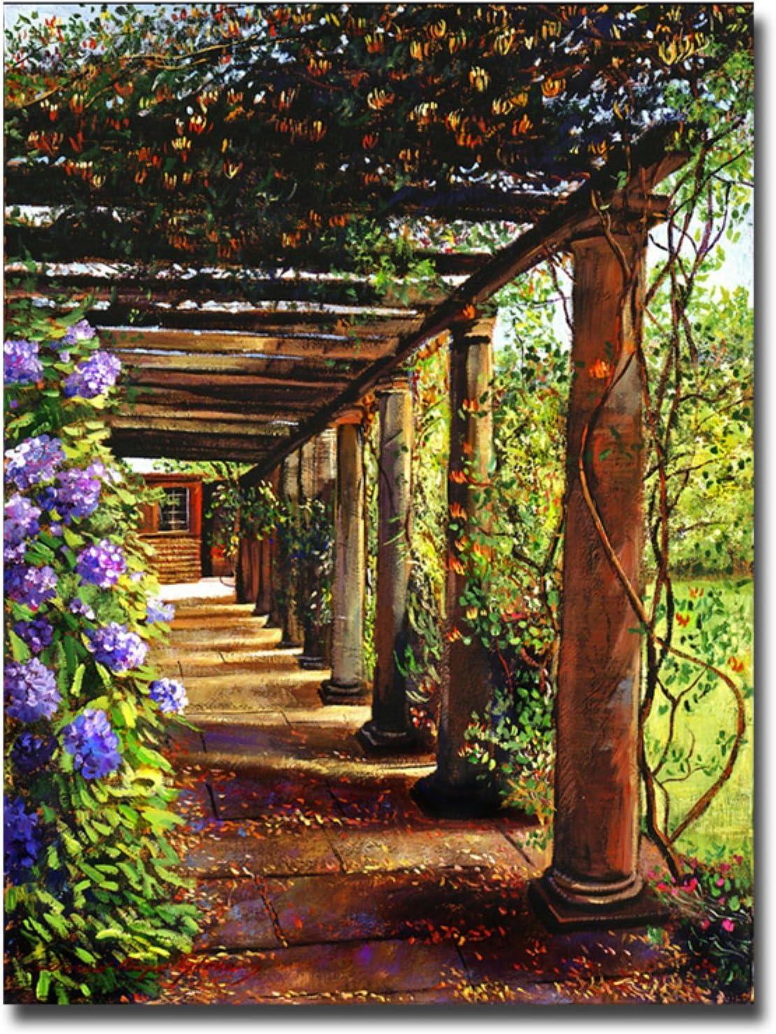 Trademark Marca Fine Art Pergola Pasarela por David Lloyd Glover Lienzo Pared Arte, 18 by 24-Inch: Amazon.es: Hogar