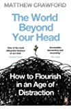 The World Beyond Your Head: How to Flourish in an Age of Distraction