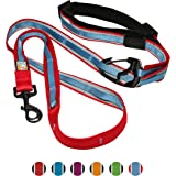 Kurgo 1132 6-in-1 Quantum Hands Free Dog Leash for Walking, Running or Hiking with Adjustable Waist Belt, Red/Blue