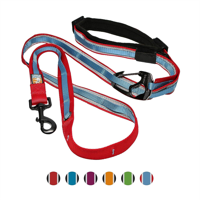 Amazon.com: Correa para perro Kurgo Quantum , m, Rojo/Azul ...