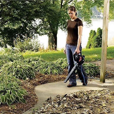 hand-held leaf blowers