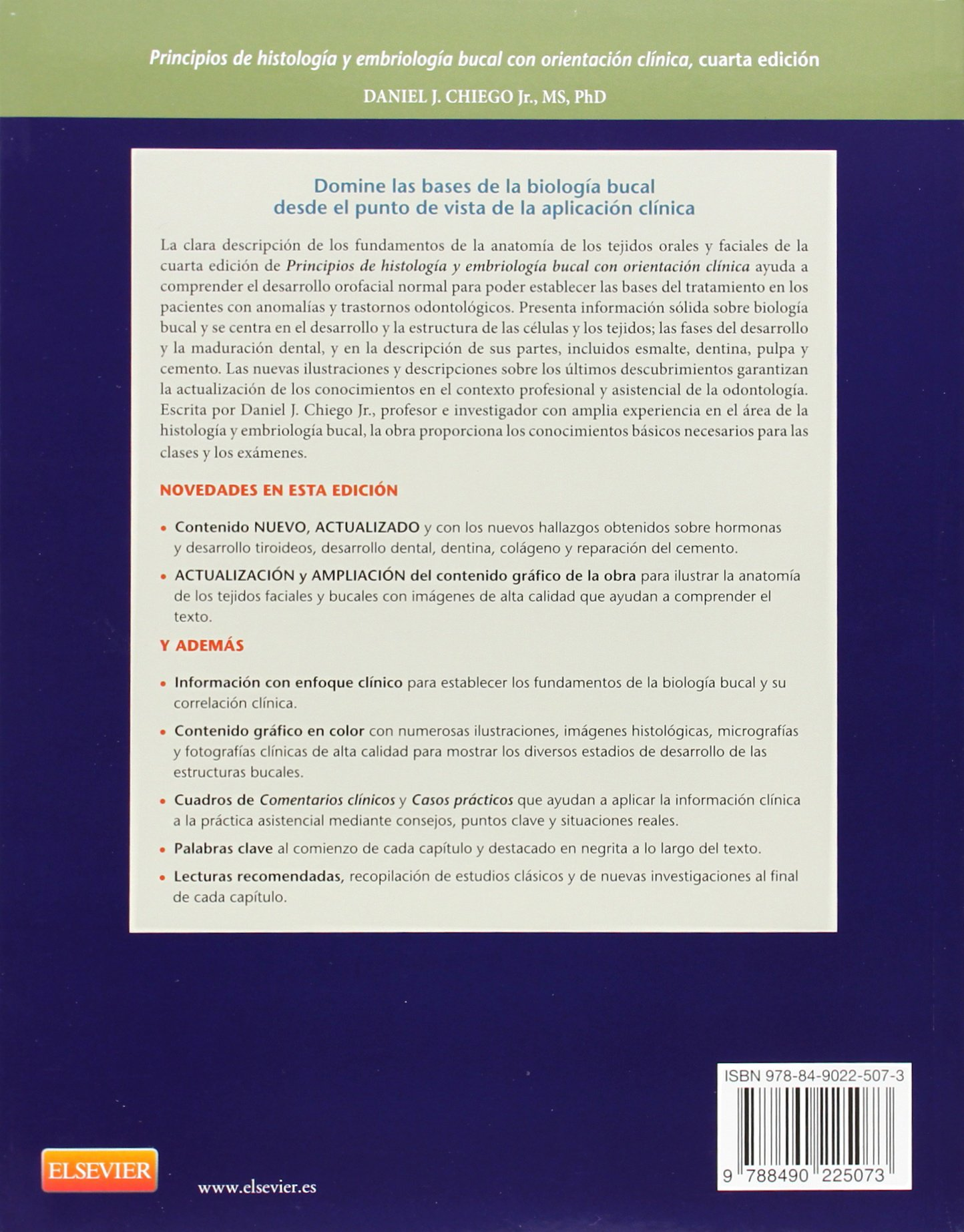 Lujo Dental Histología Embriología Y Anatomía Ilustración - Anatomía ...