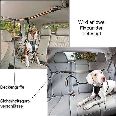 Kurgo Autositzgurt Für Haustiere Direkt Zum Sicherheitsgurtband Für