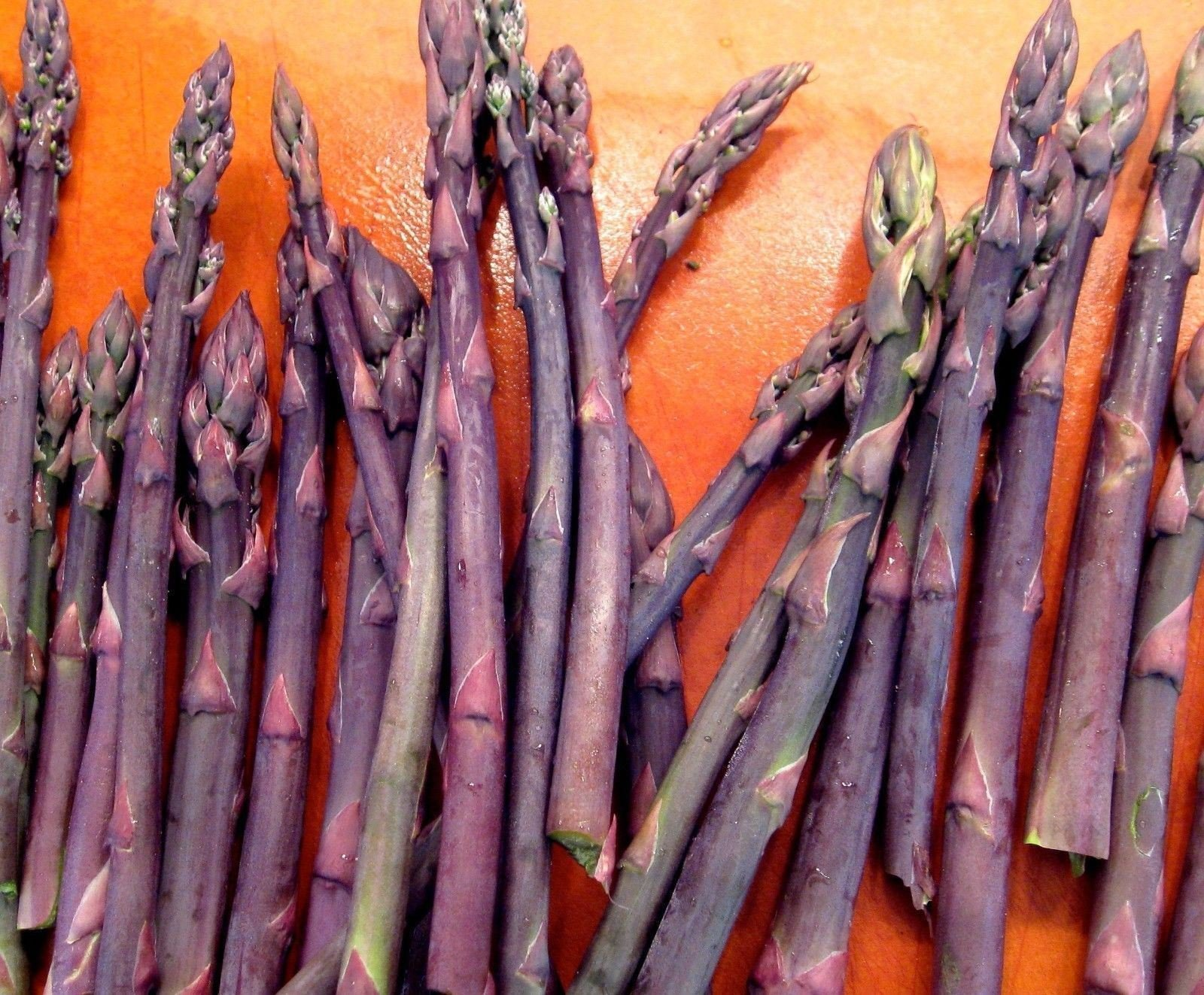 20 Asparagus Crown - Asparagus - Purple Passion 2 Year Roots by eightplant