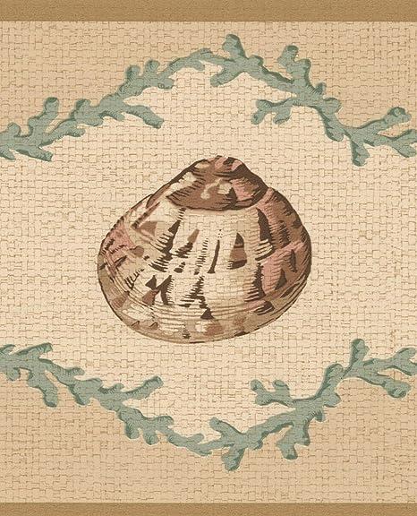 Seashells Beige Green Brown Nautical Wallpaper Border Retro
