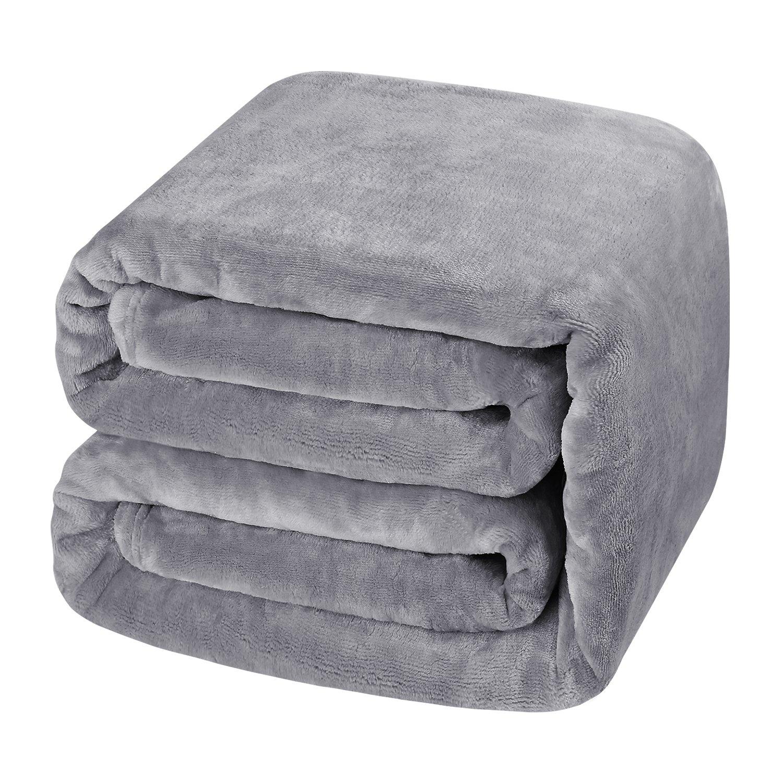 HOMEIDEAS Luxury 380 GSM Fleece Blanket Super Soft Warm Fuzzy Lightweight Bed Blanket (Twin,Light Gray) by HOMEIDEAS