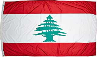 product image for Annin Flagmakers 194668 International Flag, 5x8', not_Applicable
