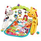 Amazon Price History for:Fisher-Price Newborn-to-Toddler Play Gym
