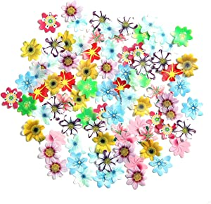 GEORLD 48Pcs Edible Cupcake Toppers Wafer Flower Cake Decoration Birthday Party Mixed Size & Colour