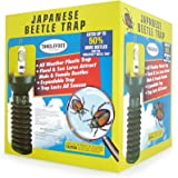 Tanglefoot Japanese Beetle Xpando Trap Kit