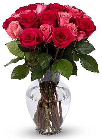 Amazon Com Benchmark Bouquets 2 Dozen Blushing Beauty Roses