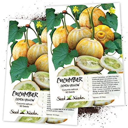 Amazon.com: Paquete de 90 semillas, limón pepino (Cucumis ...