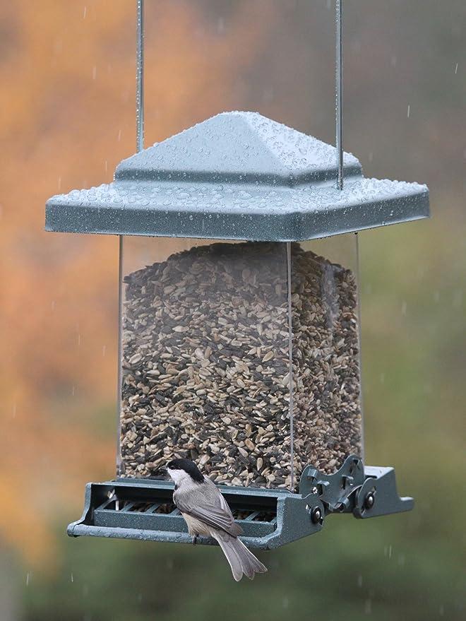 co garden rspb acrylic feeder outdoors feeders sales dp amazon ltd uk bird window