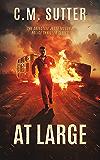 At Large: A Captivating Revenge Thriller (The Detective Jesse McCord Police Thriller Series Book 2)
