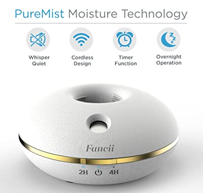 Fancii Cool Mist Personal Mini Humidifier