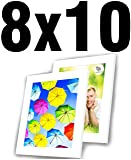 SpoiledHippo 8x10 Picture Frame White with Mat
