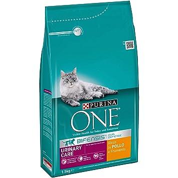 Purina One bifensis Urinary Care pienso para el Gato, Ricco (Pollo y Trigo, 1.5 kg, Pack de 6 Unidades): Amazon.es: Productos para mascotas