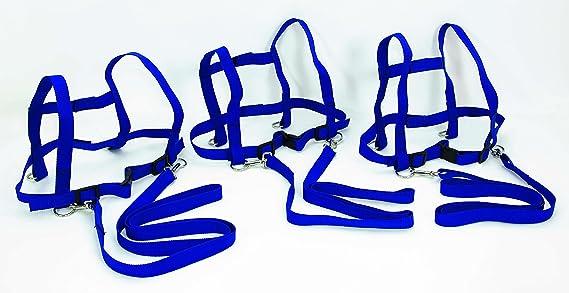 FLIXI Pferdeleine für Kinder im 3er Set – Brustgeschirr mit Sicherheits-Schnell-Verschluss – aus robustem Nylon – in Blau