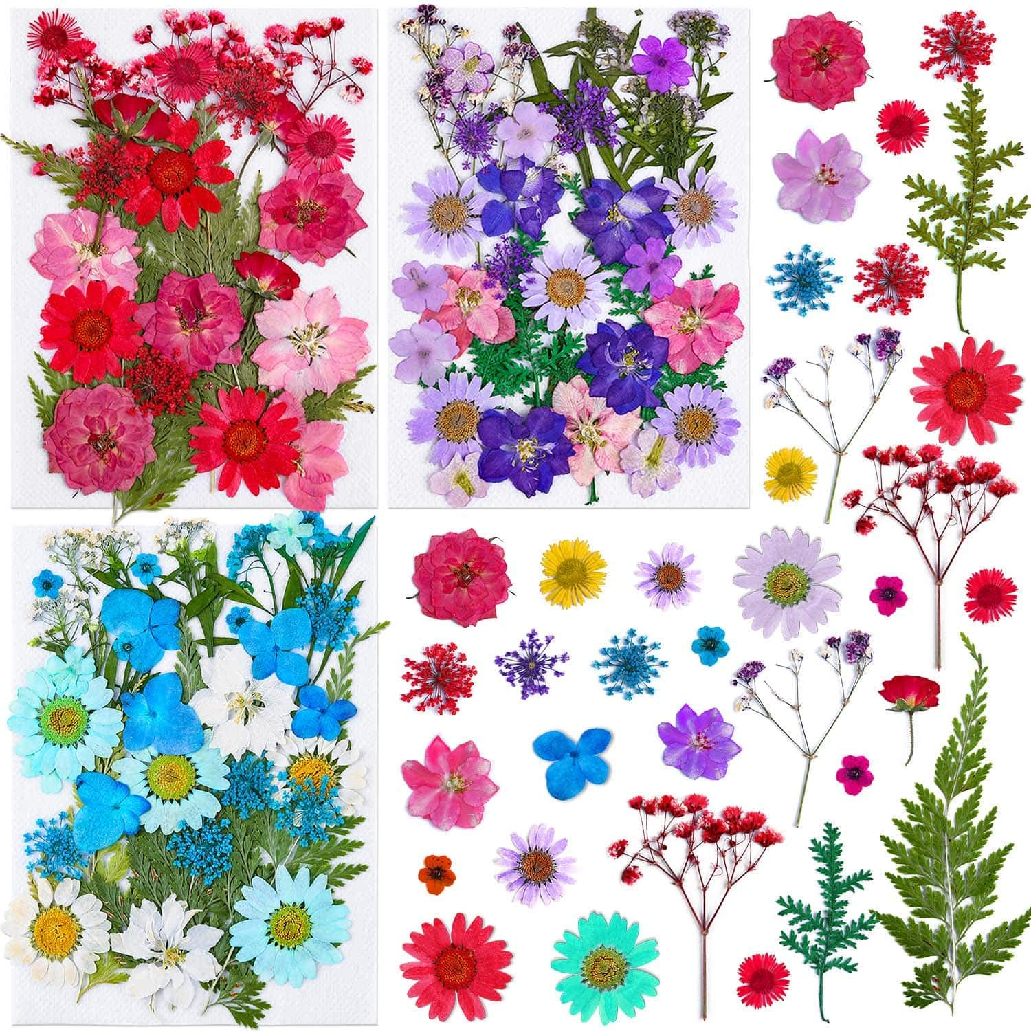 100Pcs Pressed Dried Flowers for Resin, Thrilez Natural Dried Flower Herbs kit for Resin Jewelry Making Soap and Candle Making(Blue, Purple, Red)