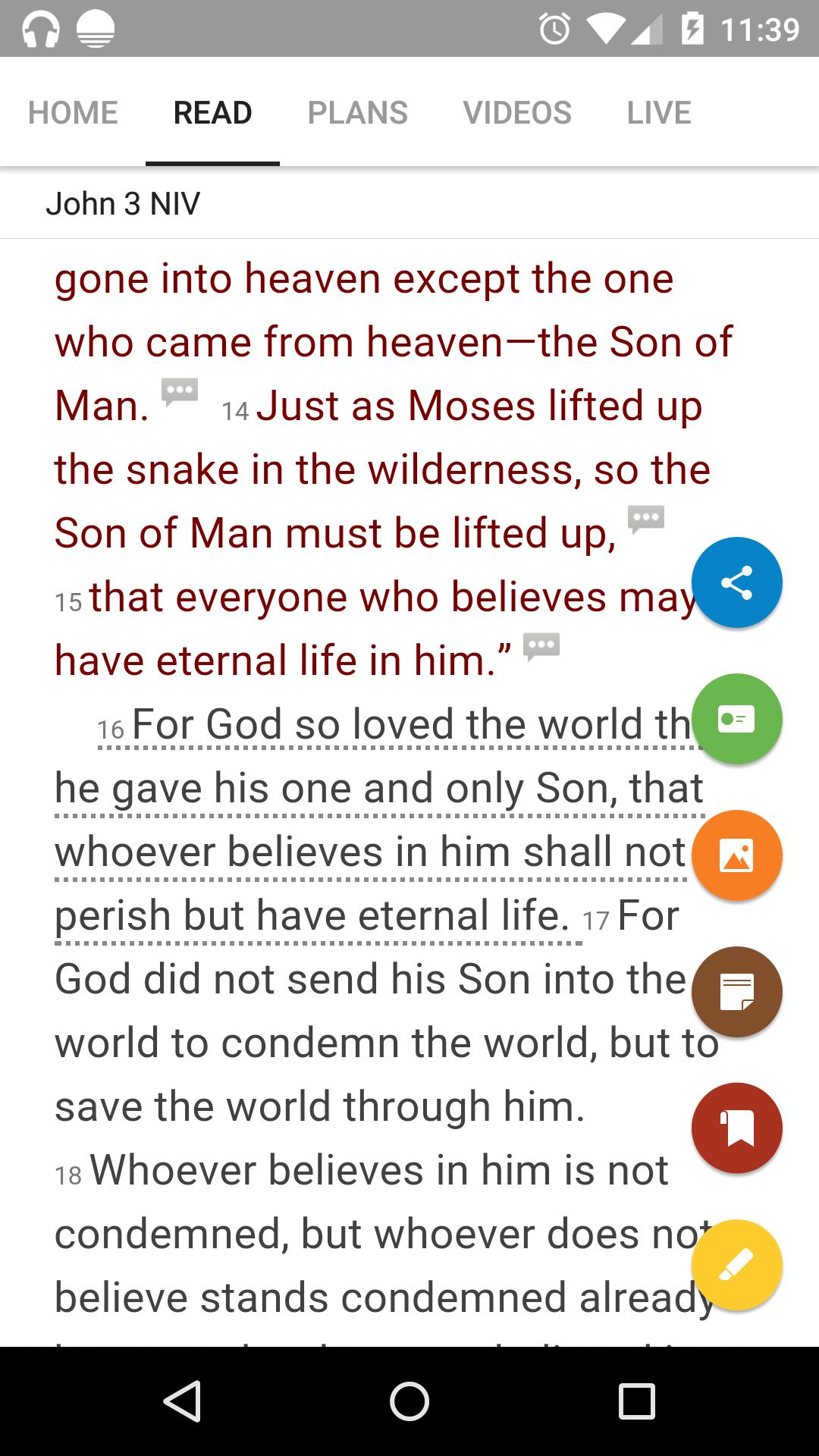 Life Church Bible Image 3