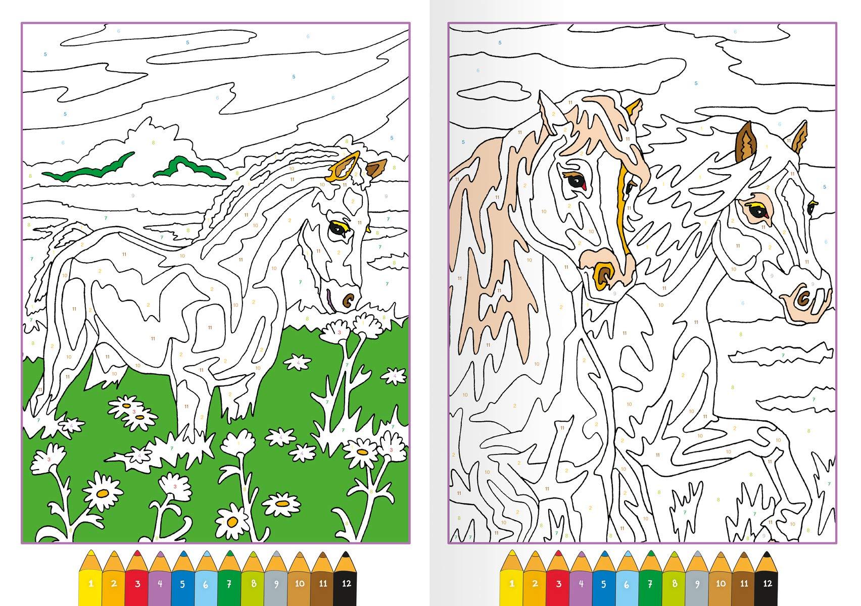Malen Nach Zahlen Pferde Amazon De Maja Wagner Bã Cher