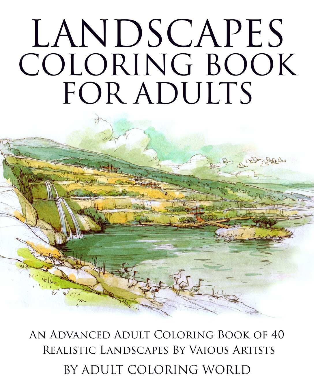 amazoncom landscapes coloring book for adults an advanced adult coloring book of 40 realistic landscapes by various artists advanced adult coloring - Advanced Coloring Books For Adults