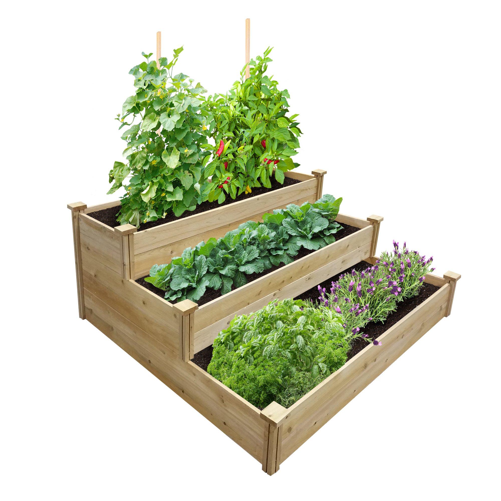 Best Value 3-Tier Cedar Raised Garden Bed Planter 48'' W x 48'' L x 21'' H
