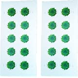 Green Succulent Sheet Of 10 Global USPS First Class International Forever Postage Stamps 2