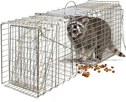 Amazon.com: OxGord - Jaula de roedores para conejos, gatos ...