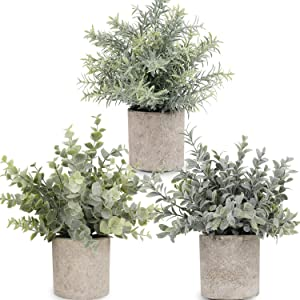 C APPOK Artificial Potted Plants Fake Eucalyptus Plant, Small Plastic Green Plant with Pot, Faux Rosemary Mini Plants for Home Decor, Indoor, Wedding Gift Table Decoration - 3 Pack, Flocking Green