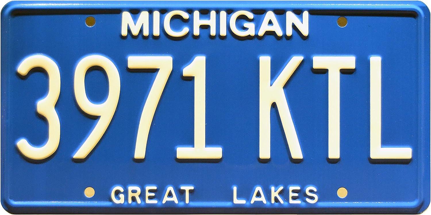 Ash vs Evil Dead Metal Stamped License Plate 3971 KTL