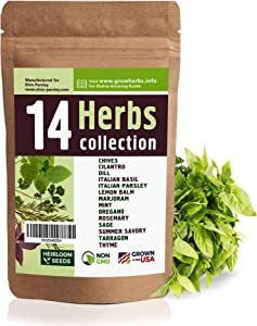 14 Culinary Herb Seeds Variety - USA Grown for Indoor or Outdoor Garden - Heirloom and Non GMO - Basil, Parsley, Cilantro, Dill, Rosemary, Mint, Thyme, Oregano, Tarragon, Chives, Sage & More