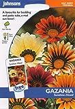 johnsons seeds - Pictorial Pack - Fiore - Gazania Sunshine Mix - 25 Semi