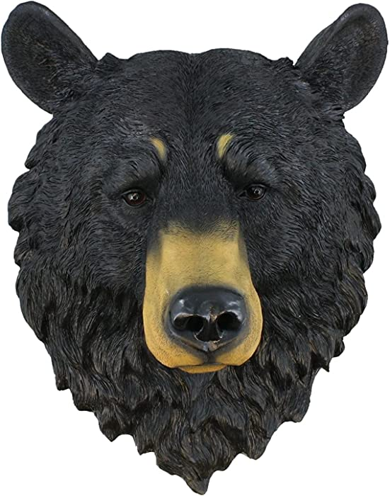 "Black Bear ~ Bust ~ Grandfather Mountain Large 17.5"" Bear Head Wall Mount"