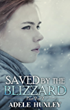 Saved by the Blizzard: A romantic winter thriller (Tellure Hollow Book 2)
