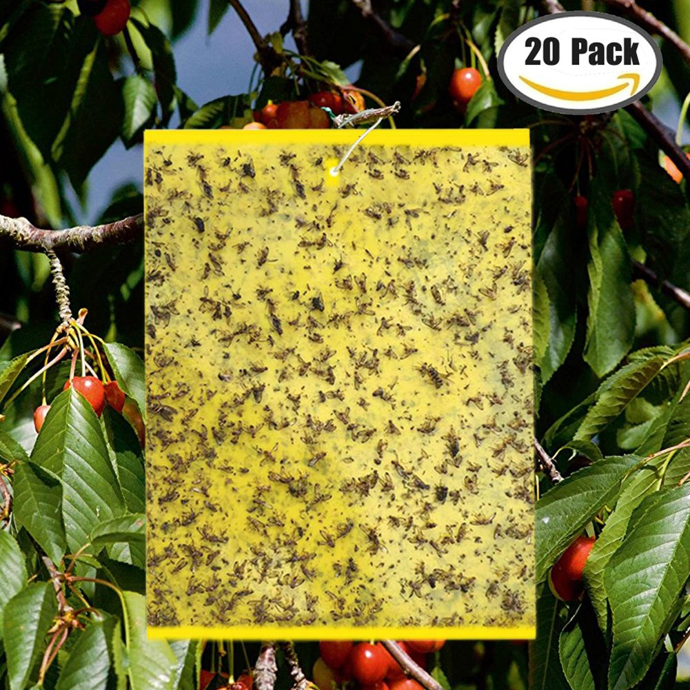 """20-Pack Yellow Bugs Traps Sticky Board, Dual-Sided Fruit Fly Trap Sheets (6""""×8"""") for Flying Aphid insect, Garden, Lawn, Farm Pest Controlling Board (Twist Ties included)"""