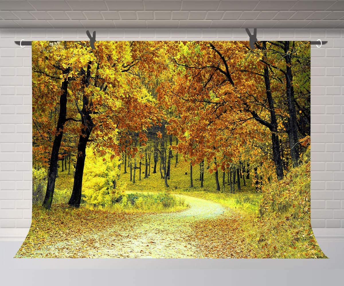 10x8ft Autumn Jungle Trees Background Fall Season Scenery Backdrop Photography Props Room Mural and Business Studio Backdrop LHFU479