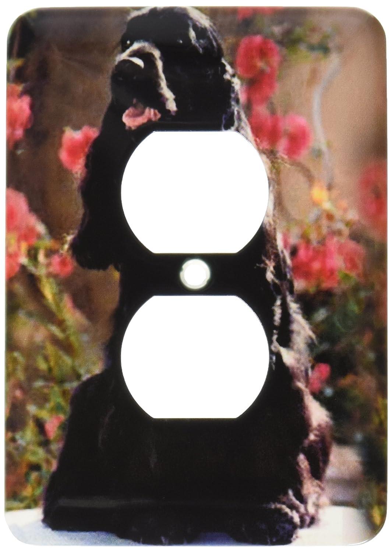 3dRose lsp/_1025/_6 English Cocker Spaniel Black 2 Plug Outlet Cover