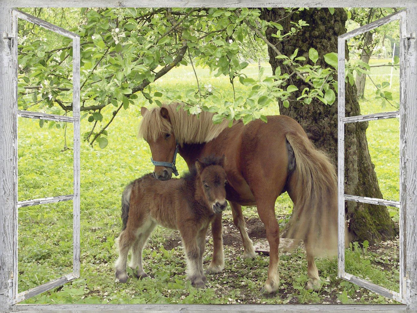 Artland Qualitätsbilder I Wandtattoo Wandsticker Wandaufkleber 120 x 90 90 90 cm Tiere Haustiere Pferd Collage Grün C0AJ Fensterblick Pony mit Kind 8c4ad0